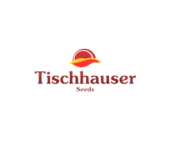 Tischhauser